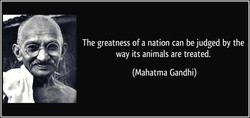 The greatness ofa nation can be judged by the 