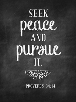 SEEK 