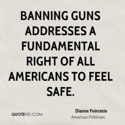 BANNING GUNS 