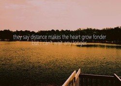 they' say distance makes the heari grow fonder