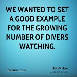 WE WANTED TO SET 