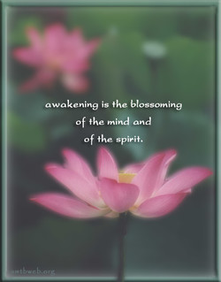 awakening is the blossoming Of mind and Of spirit.