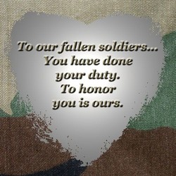 To our fullen soldiers... 