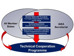 All Member 
