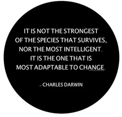 IT IS NOT THE STRONGEST OF THE SPECIES THAT SURVIVES, NOR THE MOST INTELLIGENT IT IS THE ONE THAT IS MOST ADAPTABLE TO CHANGE. tren by design b og CHARLES DARWIN