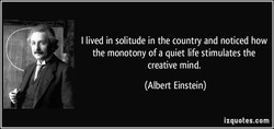 I lived in solitude in the country and noticed how 