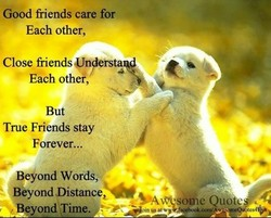 Good friends care for 