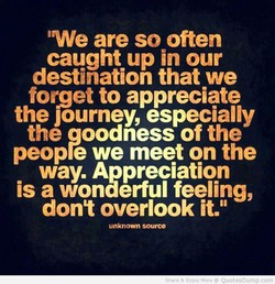awe are so often caught up in our destination that we forget to appreciate the Journey, especially the oodness of the peop e we meet on the way. Appreciation is a wonderful feeling, dont overlook it.