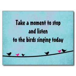 Take a momenf fo siop 