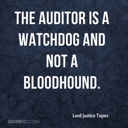 THE AUDITOR IS A 