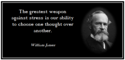 The greatest weapon against stress is our ability to choose one thought over another. William James