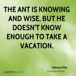 THE ANT IS KNOWING 