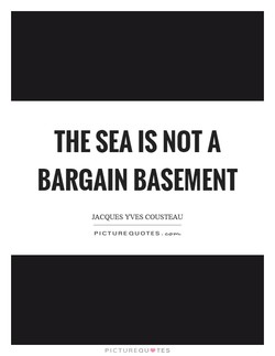 THE SEA IS NOT A 