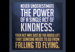 NEVER UNDERESTIMRTE 