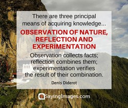 There are three principal 