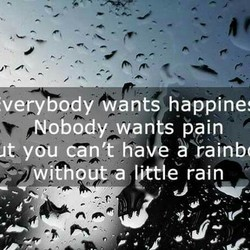 verybody wants happine 