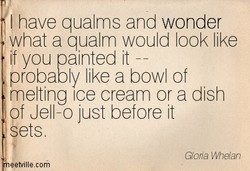 have qualms and wonder 