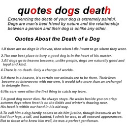 quotes dogs deat 