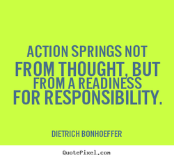 ACTION SPRINGS NOT 