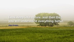 Look-deepinto na urej and then the 