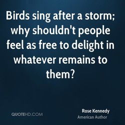 Birds sing after a storm; 