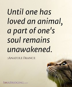 Until one has 