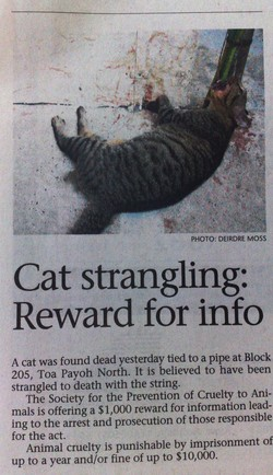 PHOTO: DEIRDRE MOSS 
