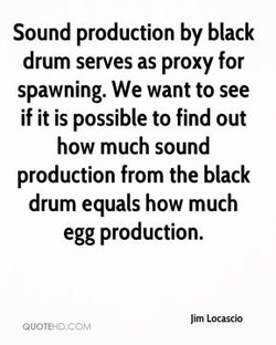 Sound production by black 