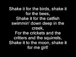 Shake it for the birds, shake it 