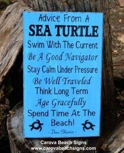 hdvice From h 