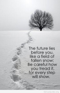 The lies 