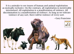 It is a mistake to see issues of human and animal exploitation 