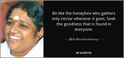 Be like the honeybee who gathers 