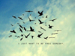 1 JUST WANT TO BE FREE SOMEDAY.