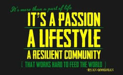 mone 