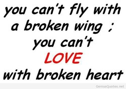 you can't fly with 