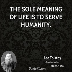 THE SOLE MEANING 