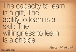 The capacity to learn is a gift; The ability to learn is a skill; The willinaness to learn is a choice Bnan Herbert
