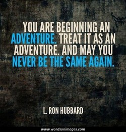 YOU ARE BEGINNING AN 