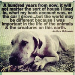 A hundred vears from now, it will 