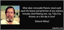 What ideal, immutable Platonic cloud could equal the beauty and perfection of any ordinary everyday cloud floating over, say, Tuba City, Arizona, on a hot day in June? (Edward Abbey) izquotes.com