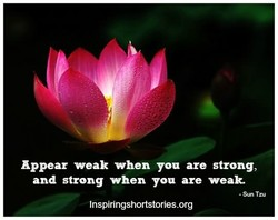 Appear weak when you are strong, 
