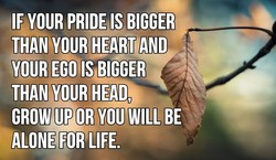 IF YOUR PRIDE IS BIGGER 