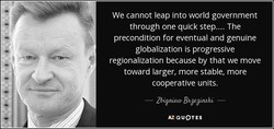 We cannot leap into world government 