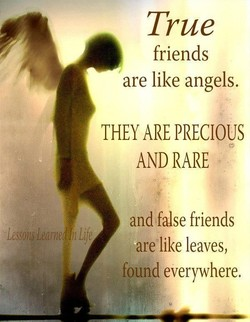 True 