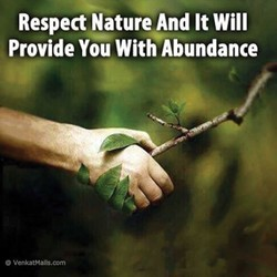 Respect Nature And It Will 