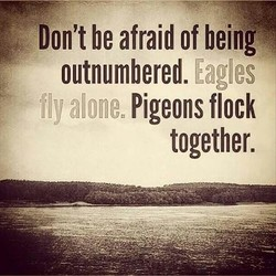 Don't be afraid of being 