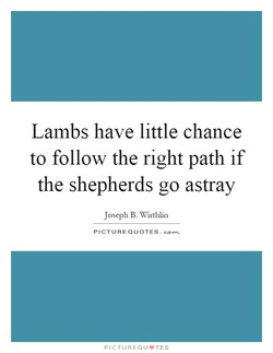 Lambs have little chance 