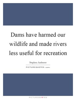 Dams have harmed our 