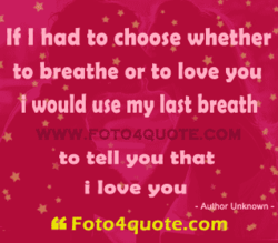 If I had to choose whether' 